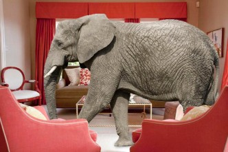 elephant-in-room